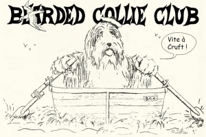 BCC Bearded Collie Club en voyage à Cruft dessin 1984